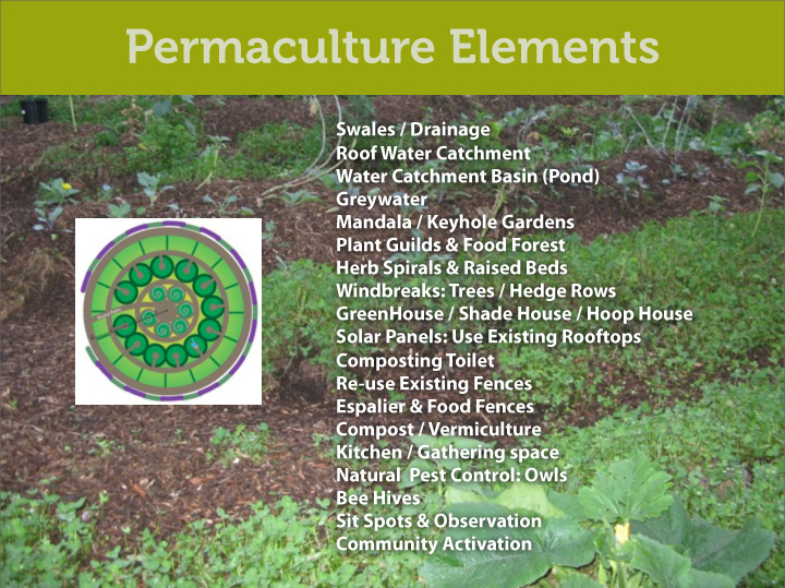 Permaculture Powerpoint presentation design - Print Graphic Design San Rafael Marin San Francisco