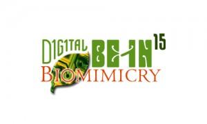 Logo Branding Graphic Design San Rafael Marin San Francisco - Digital Be-in Conference