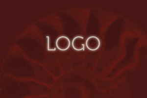 Logo Branding Design in San Francisco Bay Area, San Rafael, CA