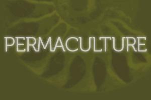 Permaculture Design button