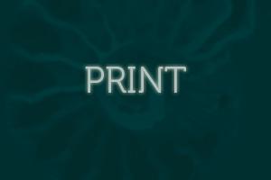 Print Design button